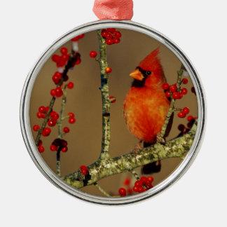 Northern Cardinal male perched, IL Silver-Colored Round Ornament