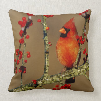 Northern Cardinal male perched, IL Throw Pillow