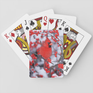 Northern Cardinal male, Winter, IL Playing Cards
