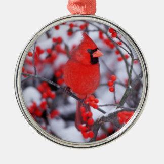 Northern Cardinal male, Winter, IL Silver-Colored Round Ornament