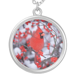 Northern Cardinal male, Winter, IL Silver Plated Necklace