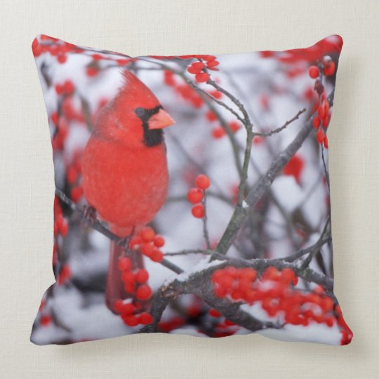 Northern Cardinal male, Winter, IL Throw Pillow