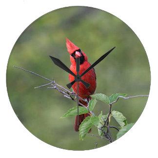 Northern cardinal perched clocks