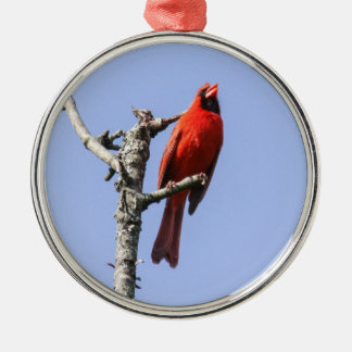 Northern Cardinal Silver-Colored Round Ornament
