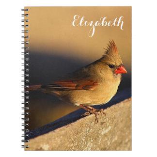 Northern Cardinal Spiral Notebook