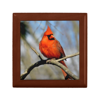 Northern Cardinal (Spring) Wood Gift Box