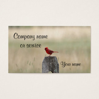 Northern cardinal standing on a fence post business card