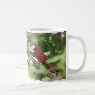 Northern cardinal stands on a tree branch coffee mug
