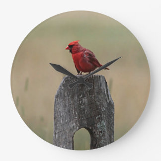 Northern cardinal wallclock