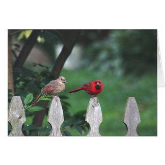 Northern cardinals card