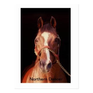Northern Dancer...World's Greatest Stallion Postcard