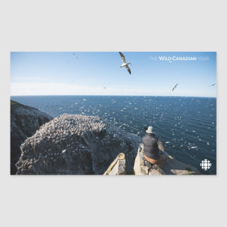 Northern Gannets Sticker
