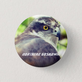 Northern Goshawk 1 Inch Round Button