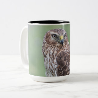 Northern Harrier Large Mug
