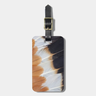 Northern Lapwing Feather Abstract Bag Tag