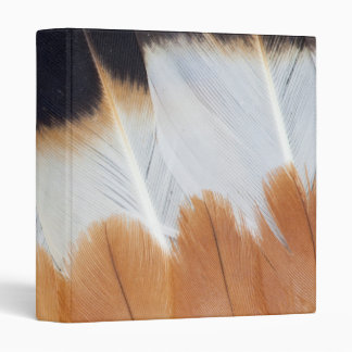 Northern Lapwing Feather Abstract Binder