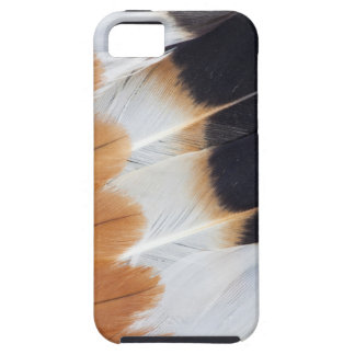 Northern Lapwing Feather Abstract Case For The iPhone 5