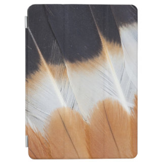 Northern Lapwing Feather Abstract iPad Air Cover