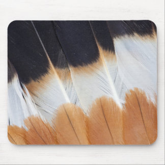 Northern Lapwing Feather Abstract Mouse Pad