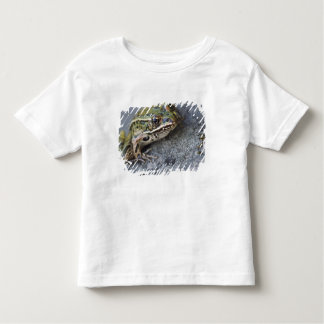 Northern Leopard frog, See-through Island, Shirt