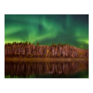 Northern Lights Alberta Postcard