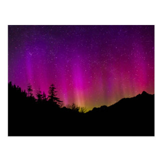 Northern Lights Aurora Borealis Starry Night Sky Postcard