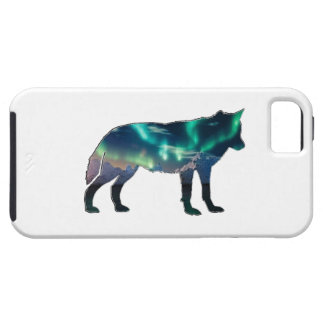 Northern Lights iPhone 5 Case
