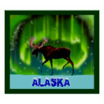 Northern Lights Moose Poster