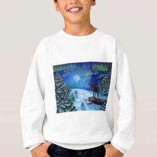 Northern Lights Sweatshirt