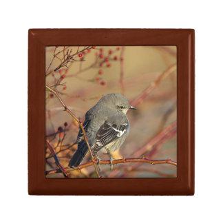 Northern mockingbird gift box