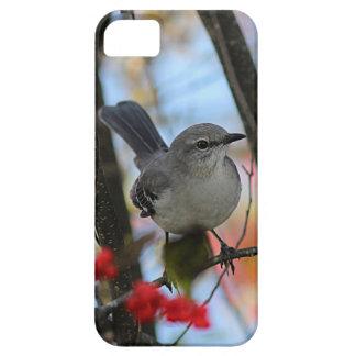 Northern mockingbird iPhone 5 case