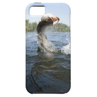 Northern Pike jumping out of water in a lake. iPhone 5 Case