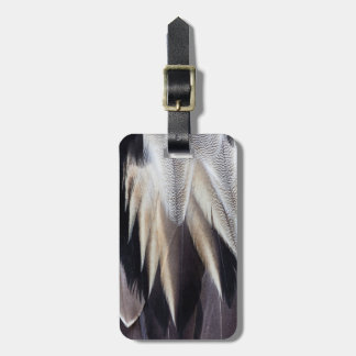Northern Pintail Duck feather Bag Tag