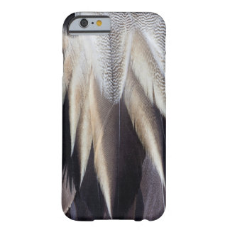 Northern Pintail Duck feather Barely There iPhone 6 Case