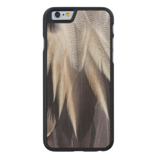 Northern Pintail Duck feather Carved Maple iPhone 6 Case