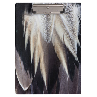 Northern Pintail Duck feather Clipboard