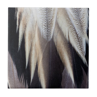 Northern Pintail Duck feather Tile