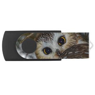 Northern Saw-whet Owl in a Tree Swivel USB 2.0 Flash Drive