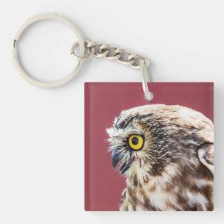 Northern Saw-Whet Owl Portrait Keychain