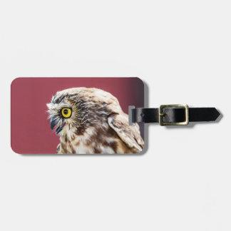 Northern Saw-Whet Owl Portrait Luggage Tag