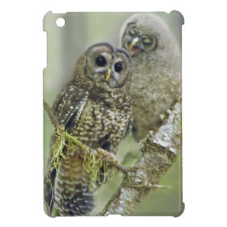Northern Spotted Owl with Owlet - iPad Mini Case