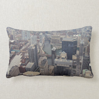 Northern View Of Chicago From Sears Tower Lumbar Pillow