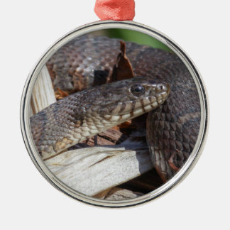 Northern Water Snake Silver-Colored Round Ornament