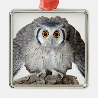 """Northern White-faced Owl"" Silver-Colored Square Ornament"