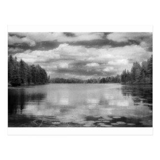Northwoods Landscape Postcard