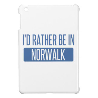 Norwalk CT iPad Mini Case