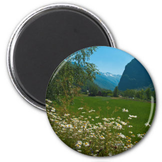 Norway spring flowers magnet