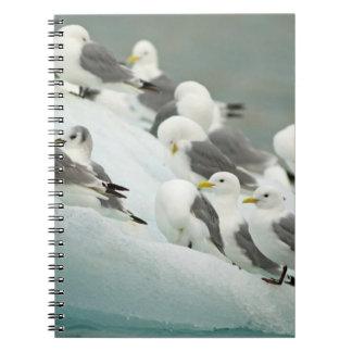 Norway, Svalbard Archipelago, Spitsbergen Notebook