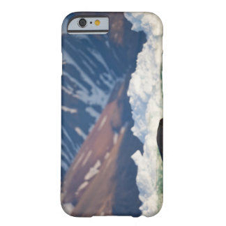 Norway, Svalbard, Spitsbergen Island, Bearded 2 Barely There iPhone 6 Case