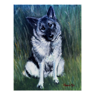 Norwegian Elkhound Dog Portrait Poster